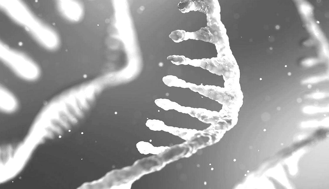 RNA_Seq_lead copy